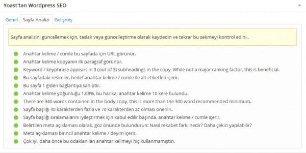 yoast wordpress seo sayfa analizi